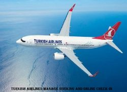 Turkish airlines check-in